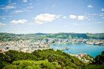 Wellington First XI: Tourist Highlights