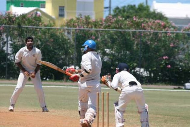 UAE seal victory over Bermuda - Cricket News