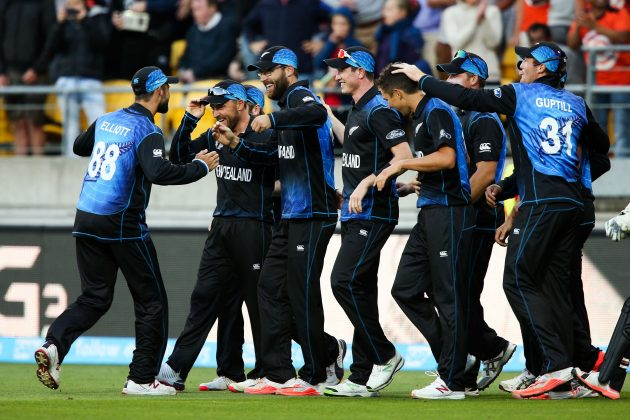Puts the icing on the cake tin news icc cricket world cup 2015
