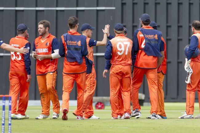 Netherlands players celebrate a wicket.